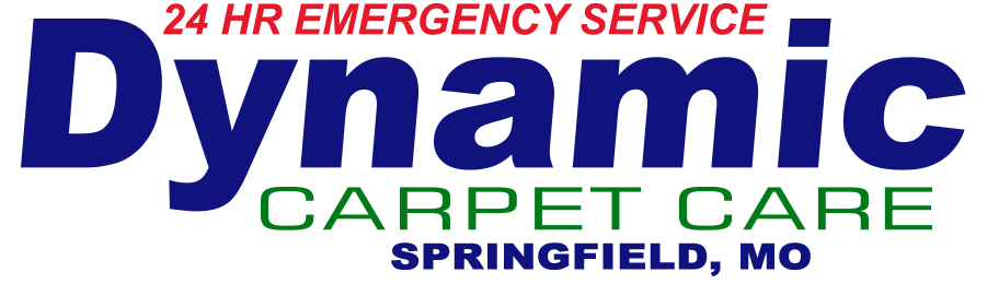 Dynamic Carpet Care of Springfield