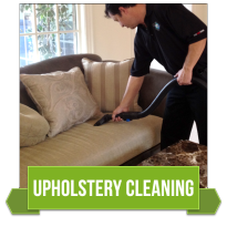 Dynamic Carpet Care Upholstery Cleaning